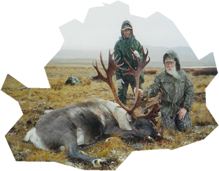 Trophy caribou from northern BC